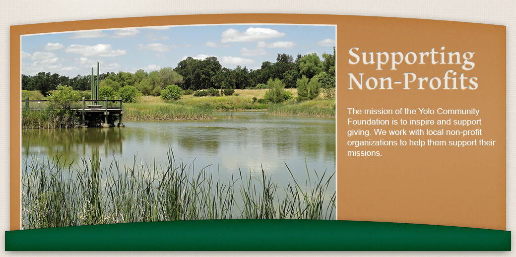Supporting Non-Profits